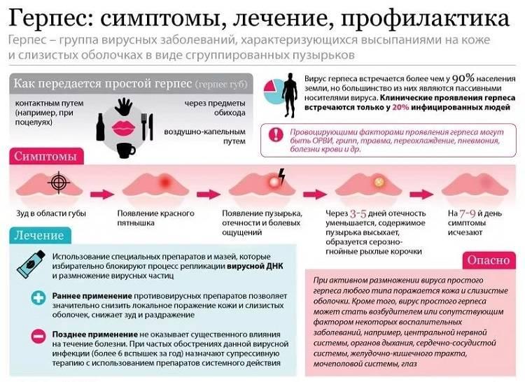 Половой герпес: фото, лечение, симптомы и как выглядит герпес на половых органах