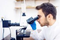 венеролог изучает урогенитальный мазок