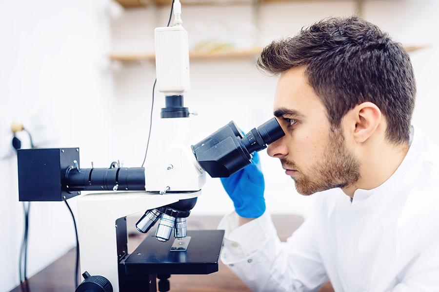 гистология в лаборатории