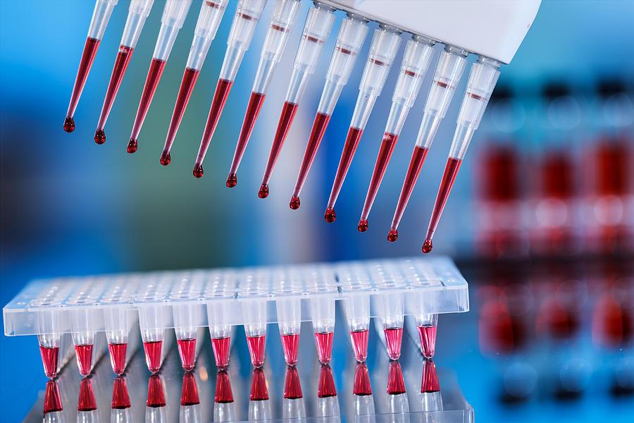 анализ крови методом ПЦР